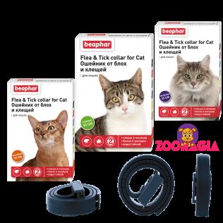Beaphar Flea & Tick collar for cat. Беафар ошейник инсектоакарицидный для кошек. Ошейник от блох и клещей.