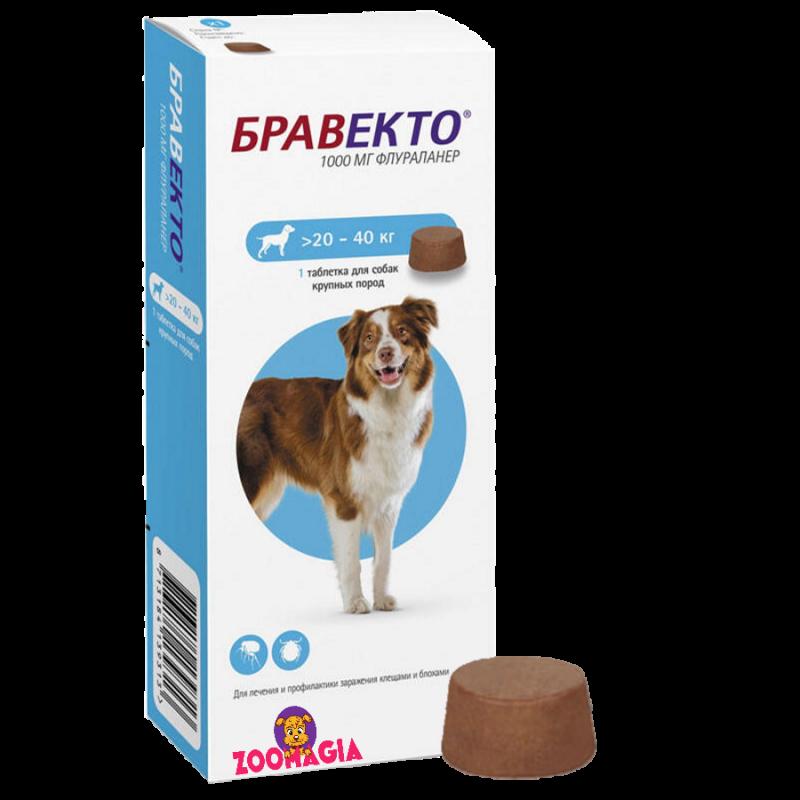 Жевательная таблетка Bravecto 20-40 kg.  Бравекто для крупных собак весом 20-40 кг.